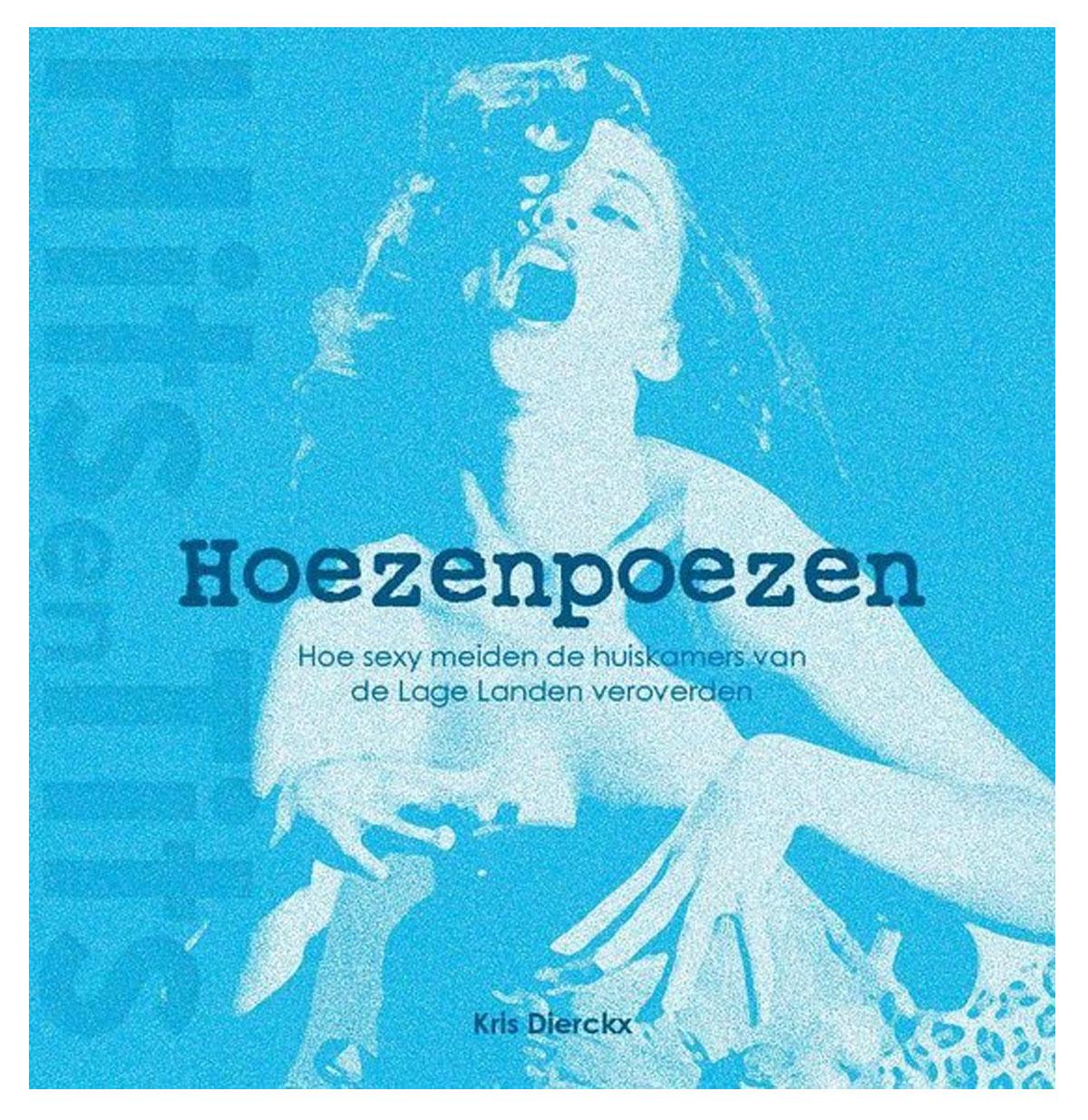 Hits En Tits - Hoezenpoezen Boek
