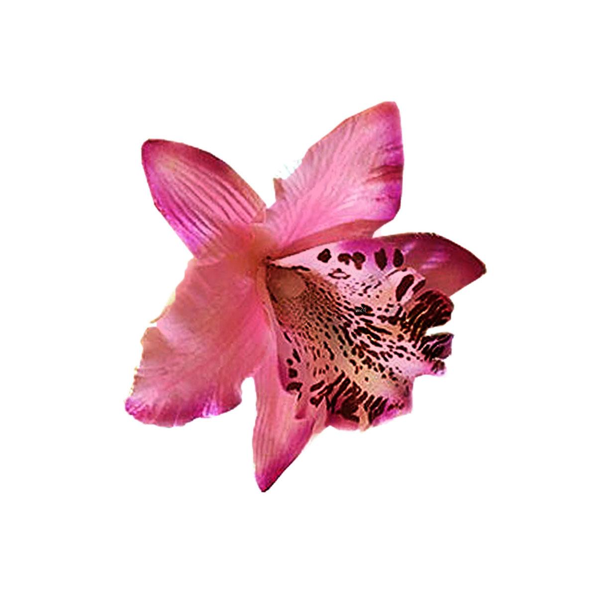 Bunny Mini Orchid Hair Flower Roze
