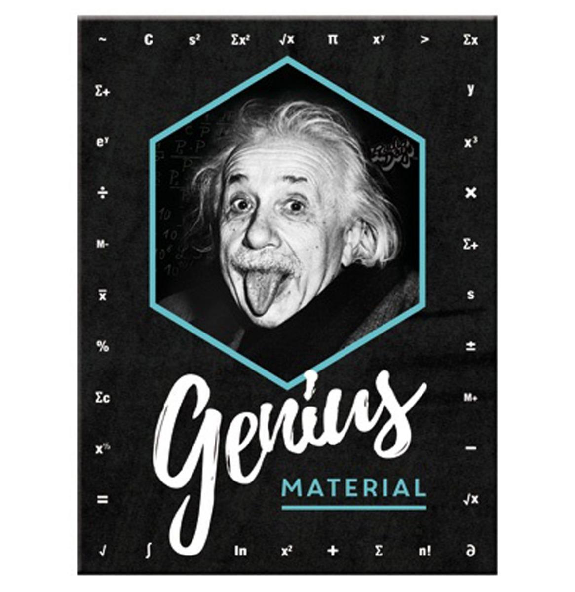 Magneet Einstein - Genius Material