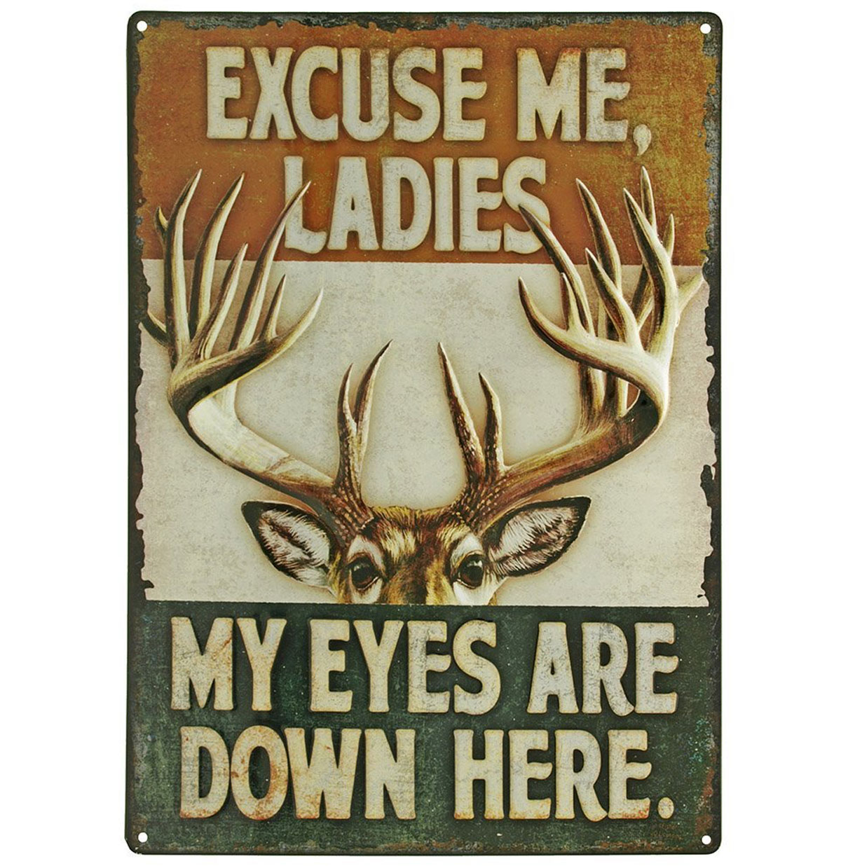 Excuse Me Ladies, My Eyes Are Down Here Metalen Poster